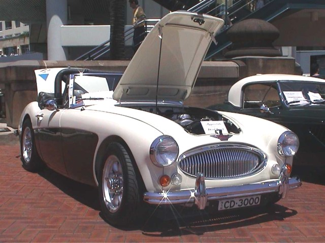 The black & white Healey 3000 at concours 2000